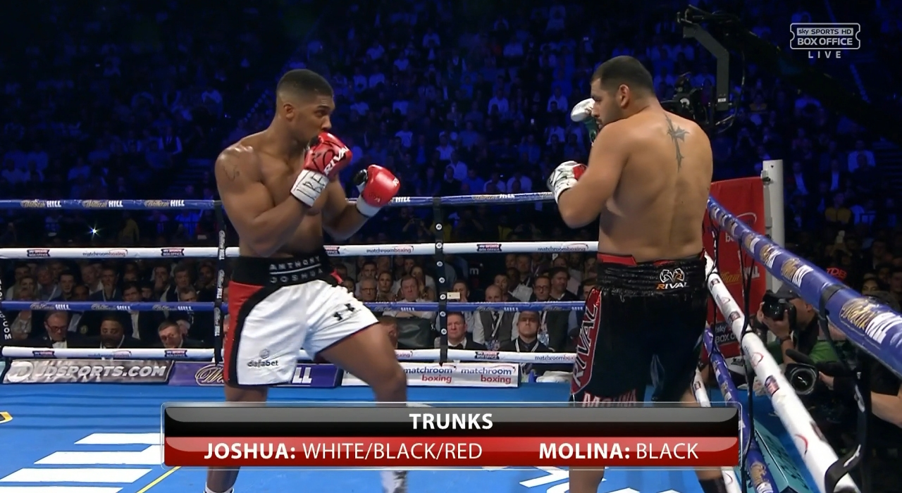 Anthony Joshua: Fights 15 to 19
